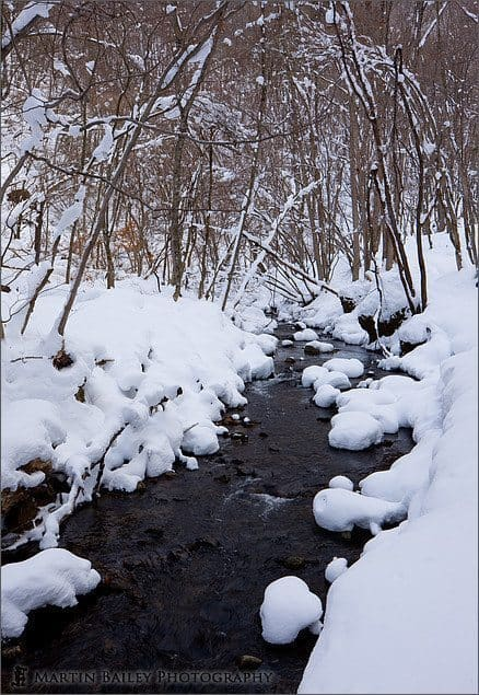 Cold Stream