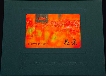 Flowerscapes Folio