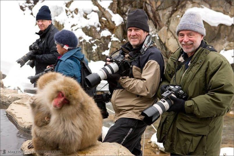 At the Snow Monkeys
