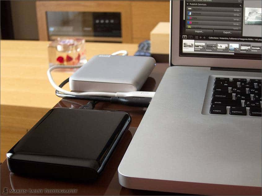 Two 1TB Western Digital HDDs