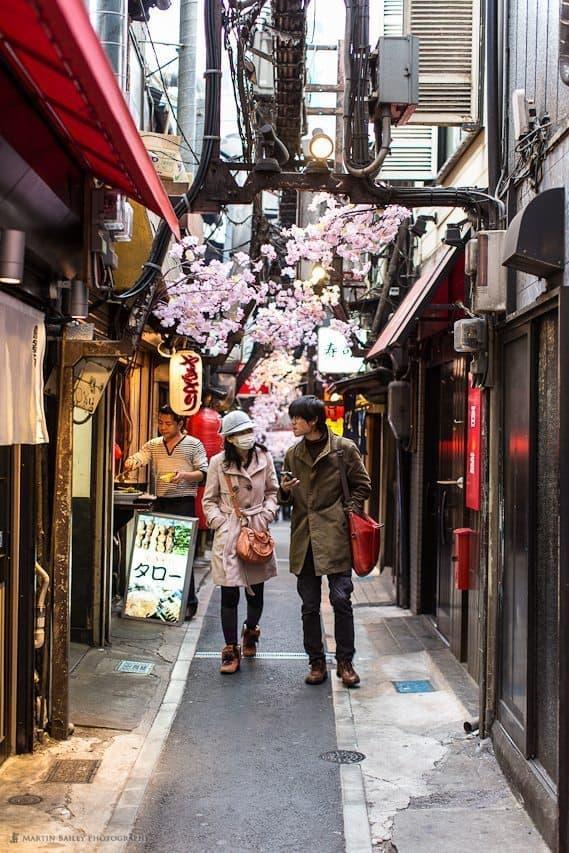 Sakura Decoration