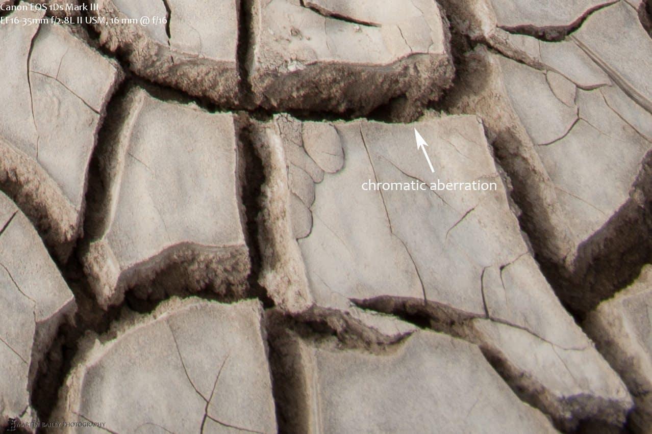 Guanaco Footprints Right Bottom Corner @ 100%