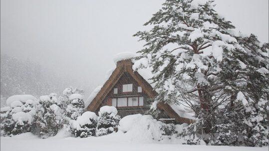 Winter Shirakawagou