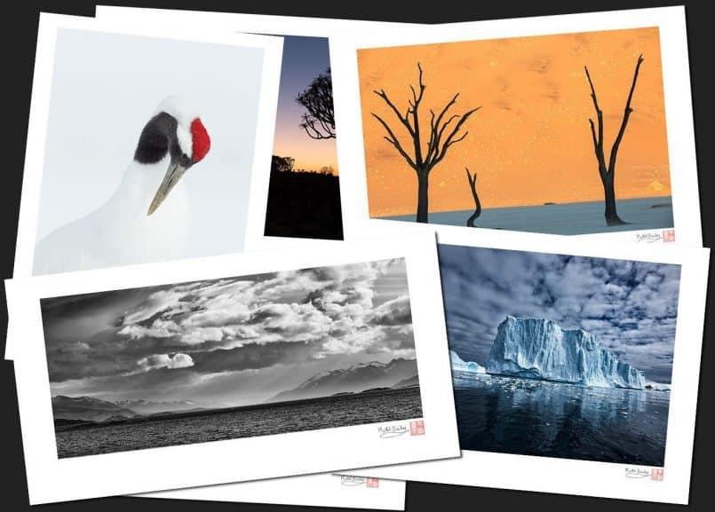 All Fine Art Prints