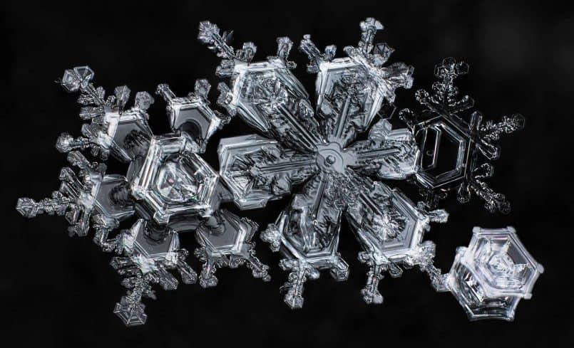 Snowflakes © Don Komarechka