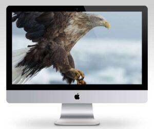 MBP High Resolution Desktop Wallpaper