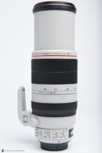 Canon EF 100-400mm f/4.5-5.6 L IS II USM Lens at 400mm