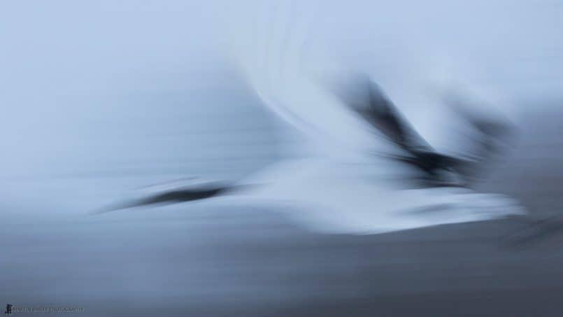 Crane Entering Warp Speed