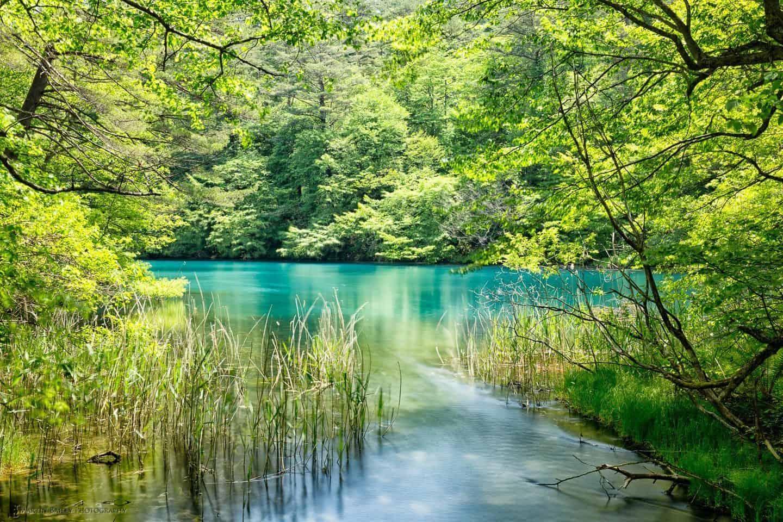 Bishamon Numa (Pond)