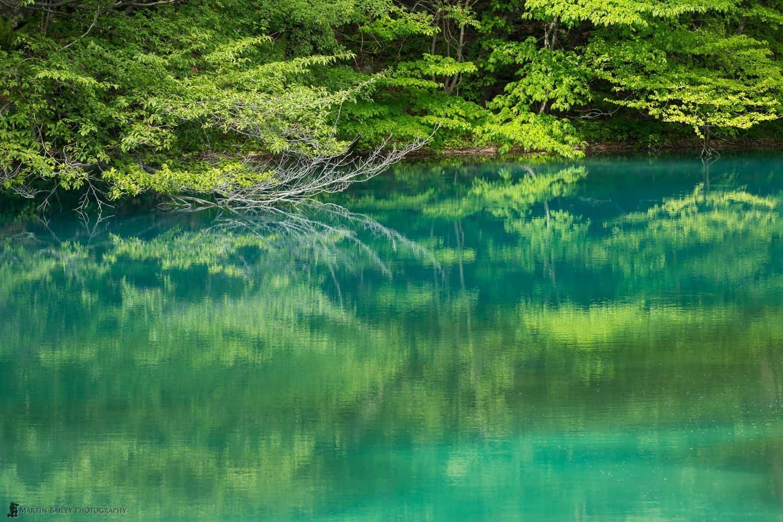 Aonuma (Blue Pond)