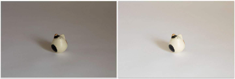 Invariance Test White Cat on White Background