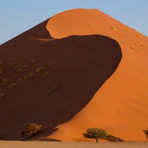 Dune 35
