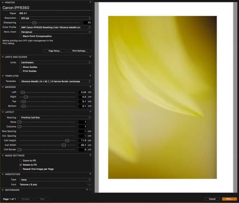Capture One 9.2 Printing Dialog