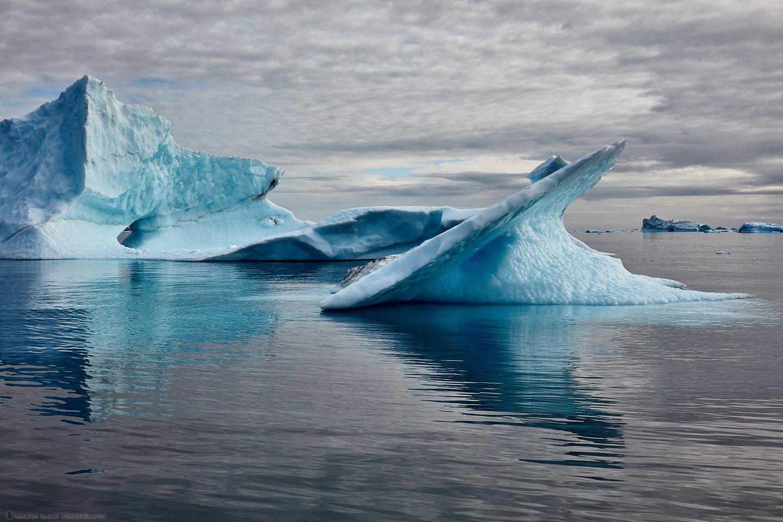 Icebergs on Sermilik Fjord