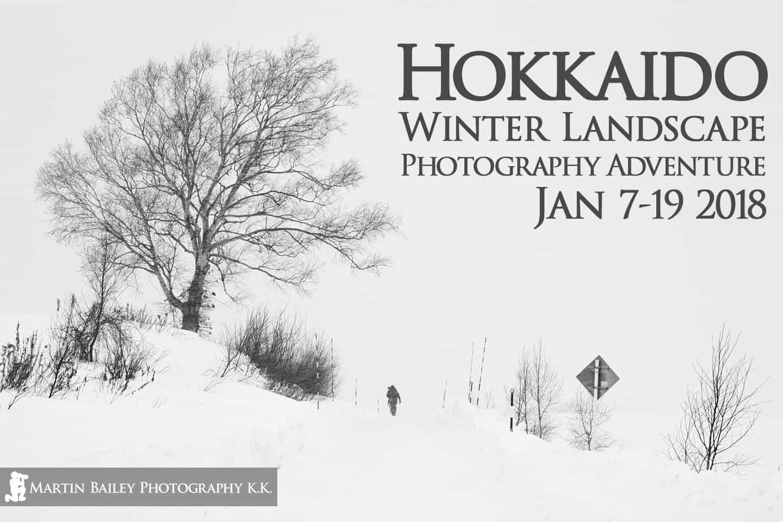 hokkaido winter landscape photography adventure  u2022 martin