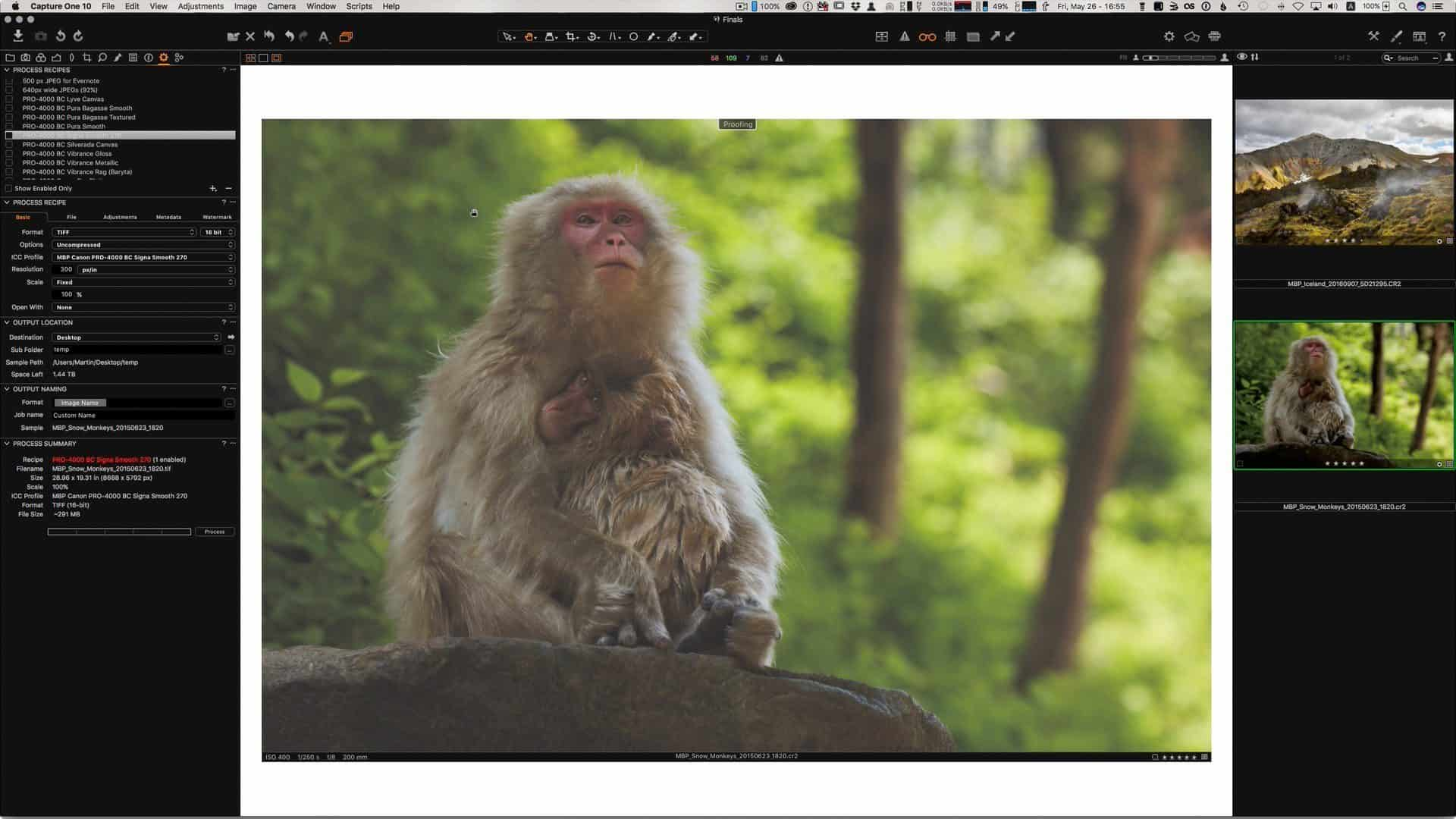 Soft Proofing for Print in Capture One Pro and Photoshop (Podcast