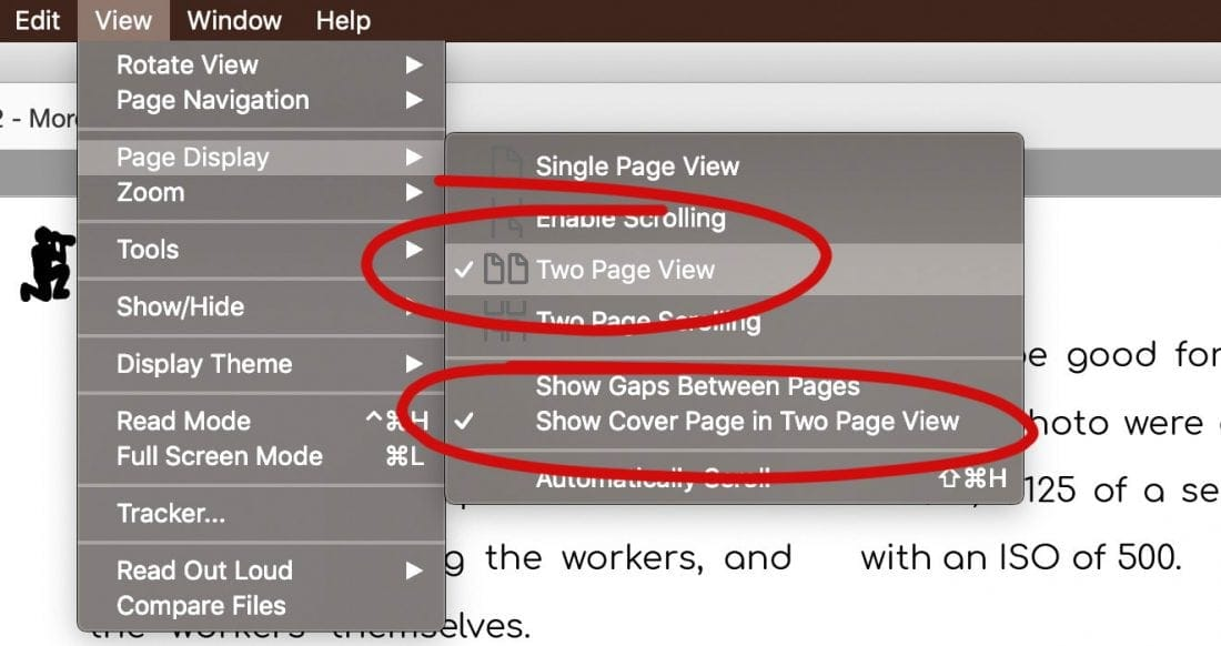 Acrobat Reader Page Settings