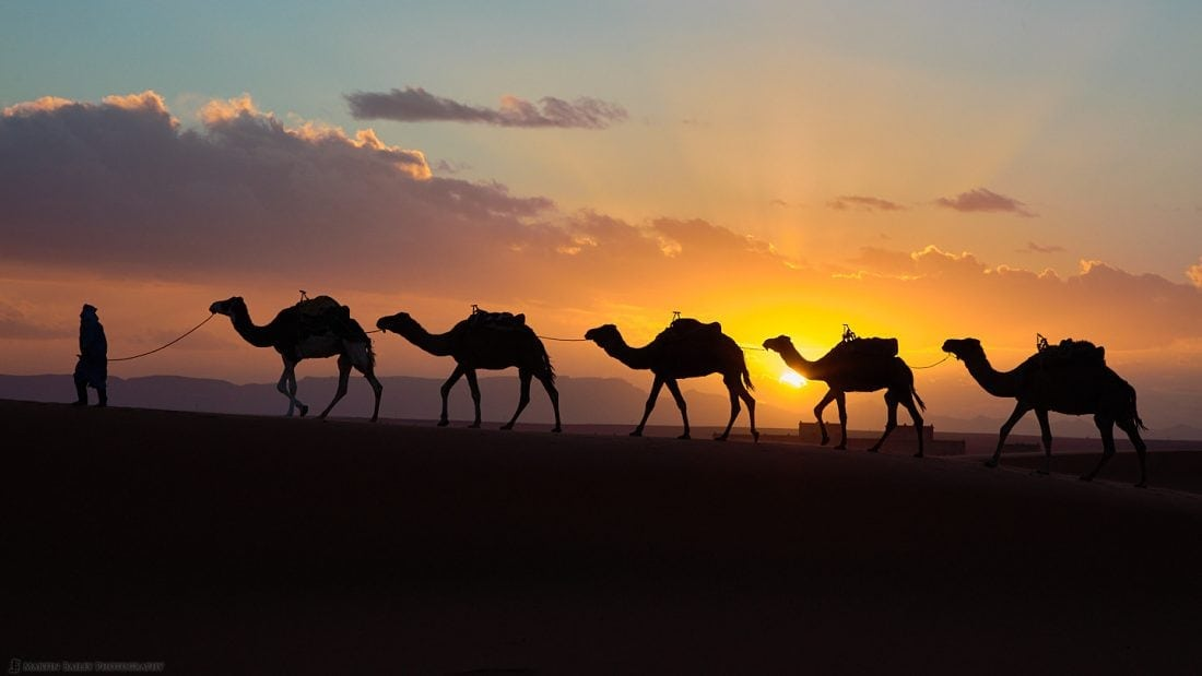 Camel Sunset with Kasbah