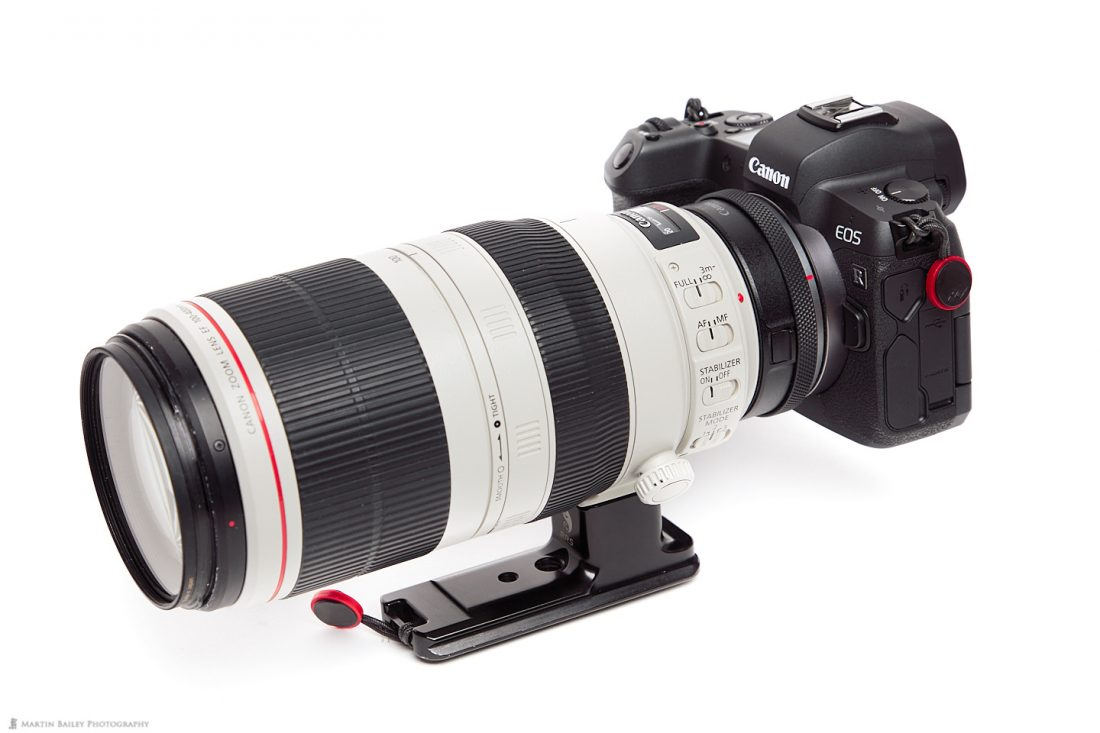 Canon Control Ring Mount Adapter with 100-400mm Lens