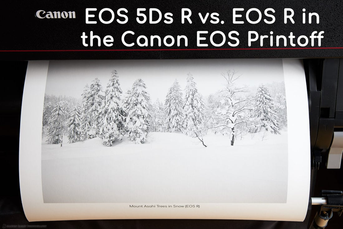 Canon EOS 5Ds R vs. EOS R Printoff