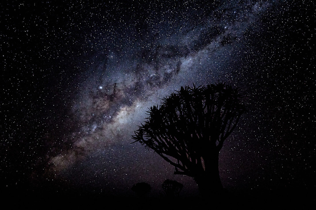 Quiver Trees and Milky Way with Jupiter