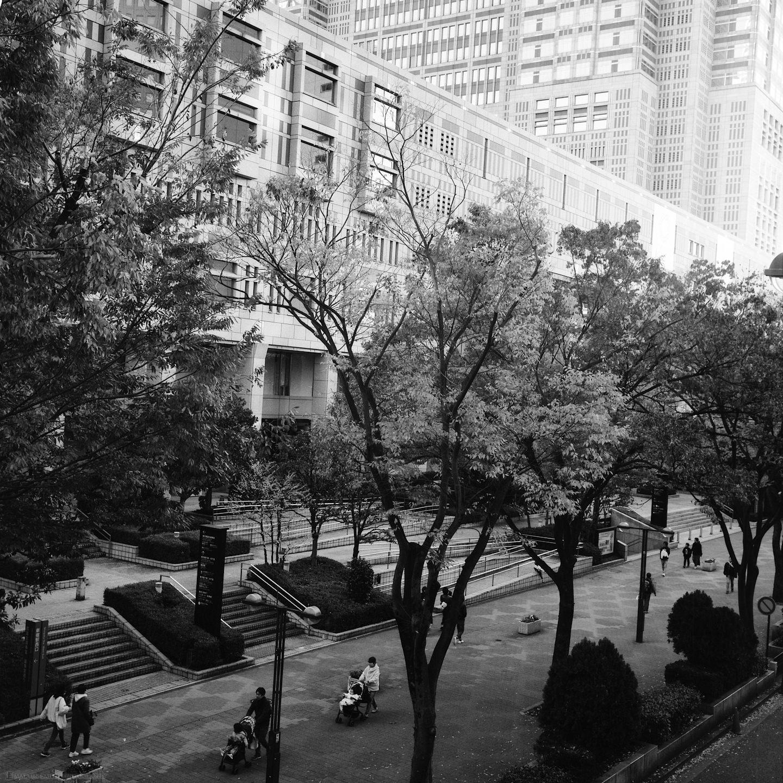 Municipal Building Street Life