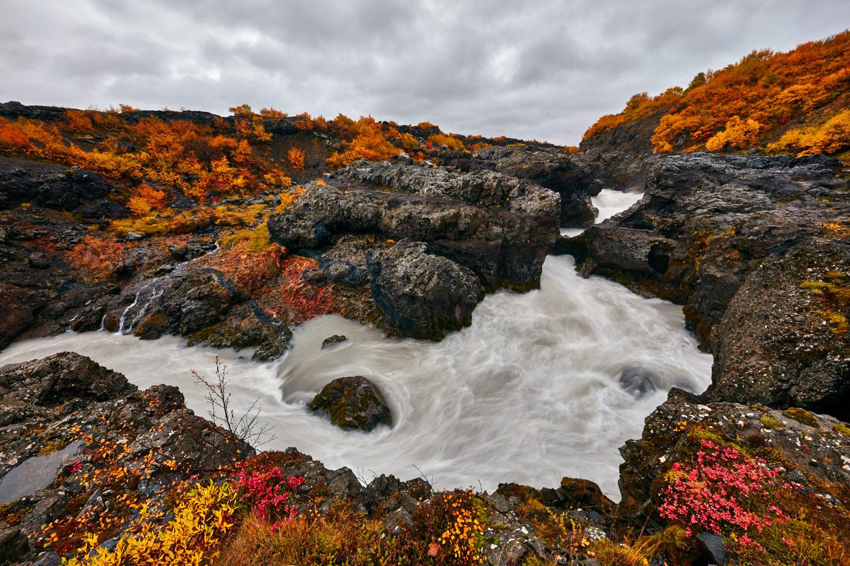 Barnafoss in Fall Color